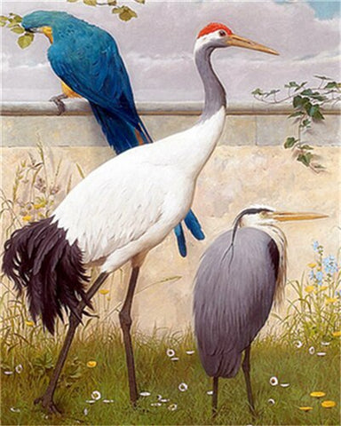 Japanese Crane- Birds Paint By Numbers