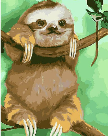 Funny Sloth - Animals Paint By Numbers