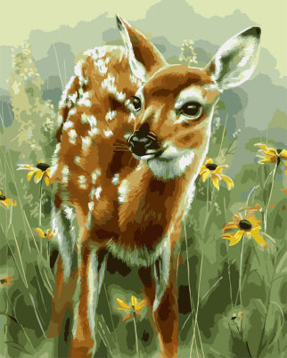 Adorable Baby Deer - Animals Paint By Numbers