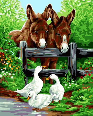 Fence Horse And Goose- Animals Paint By Numbers