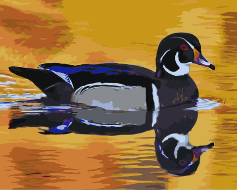 Duck Reflection in The Lake- Birds Paint By Numbers