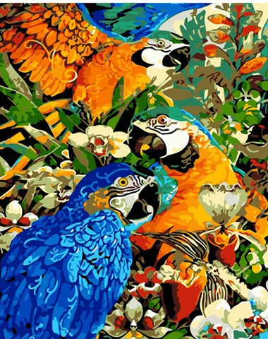 Three Beautiful Parrots - Birds Paint By Numbers