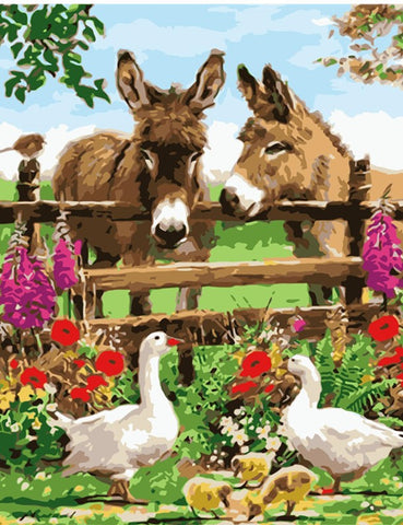 Happy Donkeys in Farm- Animals Paint By Numbers