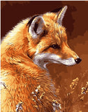 Wild Fox Animals Paint By Numbers