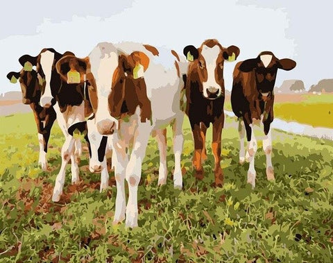 Dairy Cows - Animals Paint By Numbers