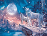 Northern Lights Wolf  - Animals Paint By Numbers