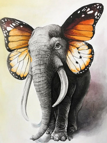 Butterfly Elephant - Animals Paint By Numbers