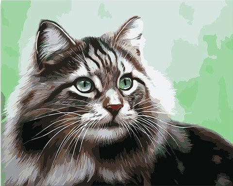 Adorable Cat - Animals Paint By Numbers
