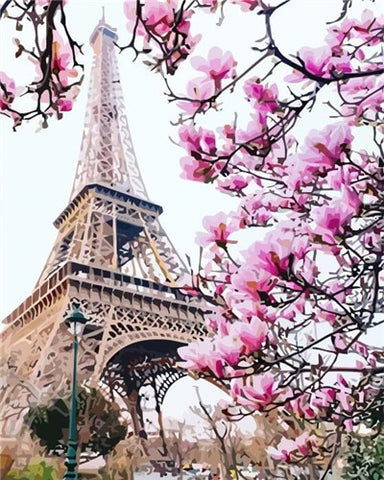 Pink Blossom in Paris- Cities Paint By Numbers