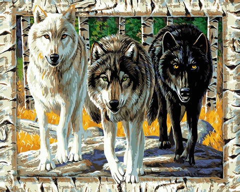 Wolves on Frame- Animals Paint By Numbers