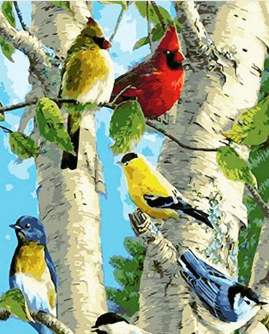 Colorful Cardinals Bird- Birds Paint By Numbers