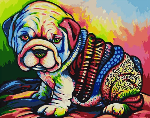 Colorful Bol Dog - Animals Paint By Numbers