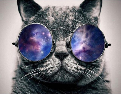 Cat With Galaxy Glasses- Animals Paint By Numbers
