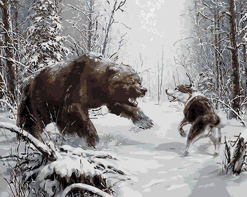 Bear Vs Wolf - Animals Paint By Numbers