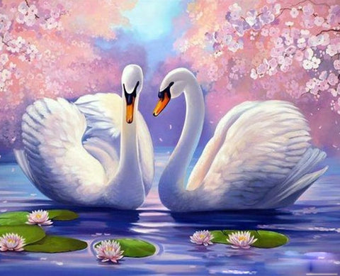Swan Animals Handpainted - DIY Paint By Numbers