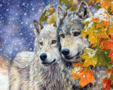 Wolf Couple - Animals Paint By Numbers