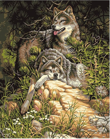 Two Grey Wolves- Animals Paint By Numbers