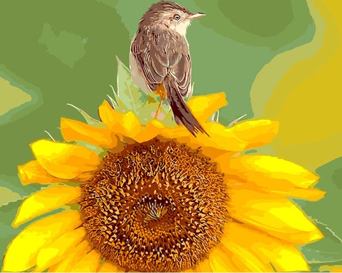Sunflower And Bird - DIY Paint By Numbers