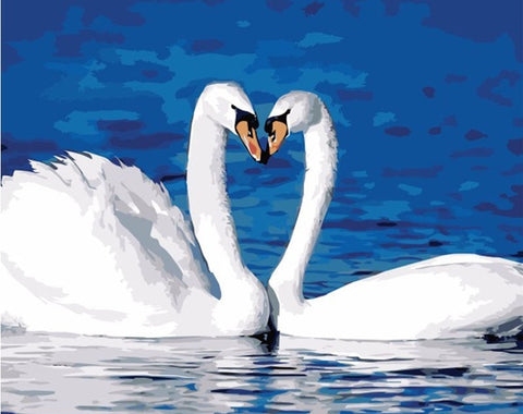 Swan Lovers Animals Picture - DIY Paint By Numbers