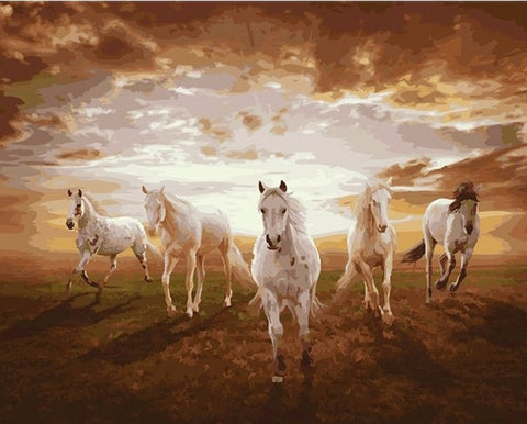 Horses galloping on Sunset - Animals Paint By Numbers