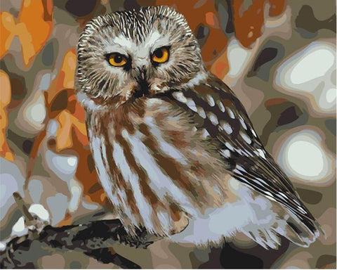 Owl animals wall art canvas - DIY Paint By Numbers - Numeral Paint