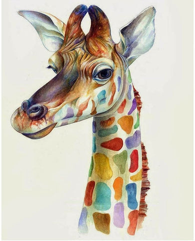 Funny Colourful Giraffe - Animals Paint By Numbers
