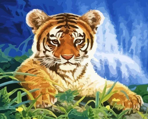 Tiger Cub- Animals Paint By Numbers