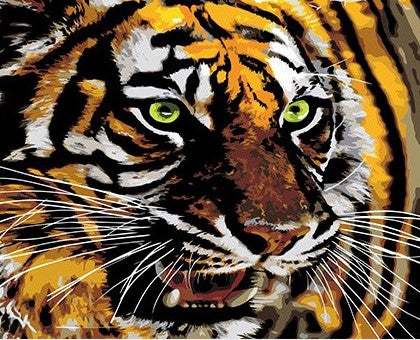 Tiger With Green Eyes- Animals Paint By Numbers