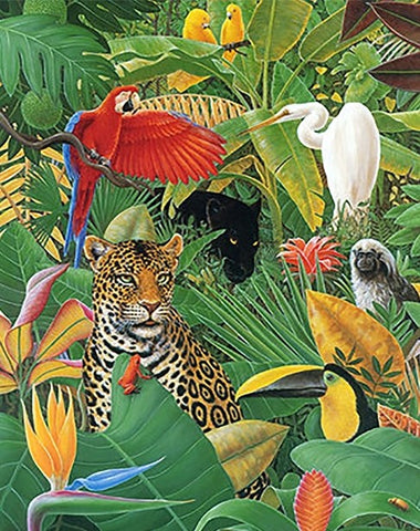 Tropical Animals- Animals Paint By Numbers