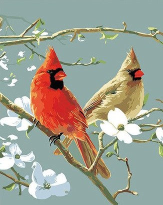 Cardinals Bird - Birds Paint By Numbers