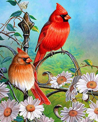 Red Sparrows - Birds Paint By Numbers