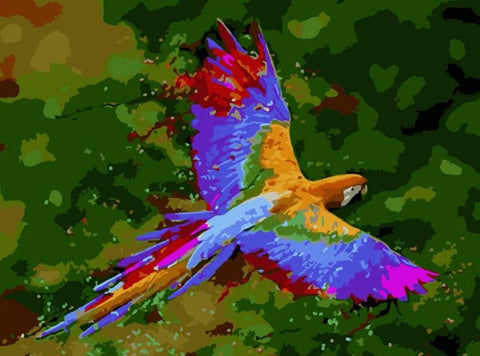 Colorful Macaw Flying - Birds Paint By Numbers