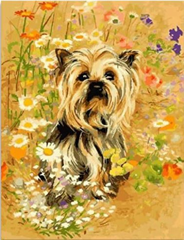The Yorkshire Terrier Dog - Animals Paint By Numbers