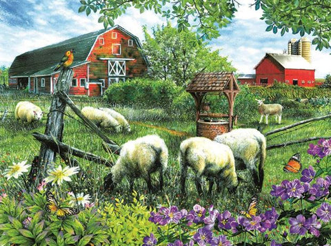 Farm Sheep- Animals Paint By Numbers