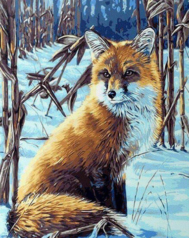 Fox in the Snow - Animals Paint By Numbers