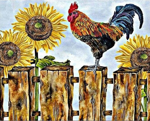 Cock With Sunflower - Birds Paint By Numbers
