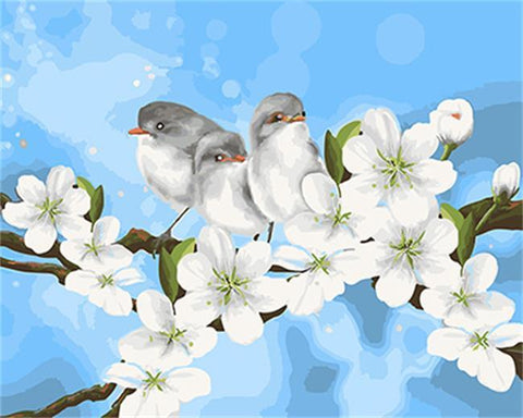 Birds on White Flowers - Birds Paint By Numbers
