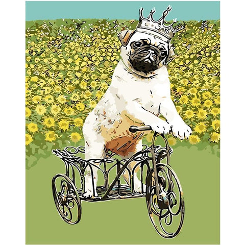 Dog Riding a Tricycle - Animals Paint By Numbers