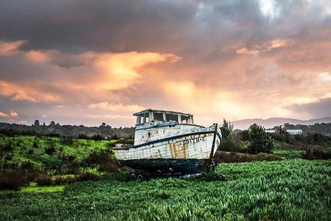 Abandoned Boat in a Field- Landscape Paint By Numbers