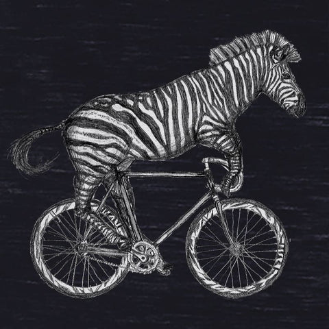 Zebra on a Bicycle Men's T-Shirt
