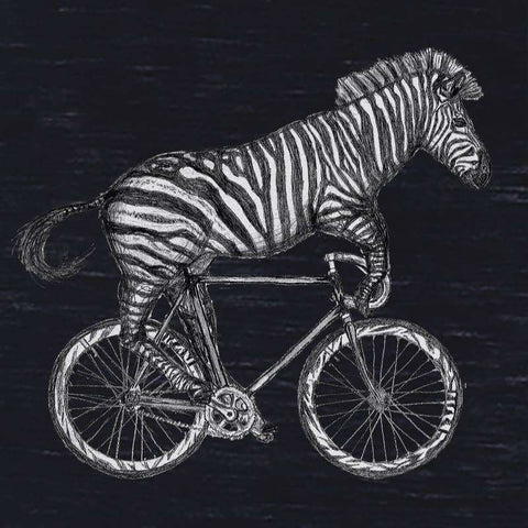 Zebra on a Bicycle Women's T-Shirt