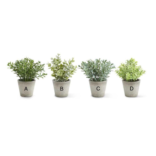 Mini Potted Herbs