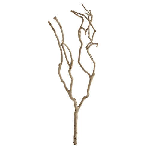 wood tree branch