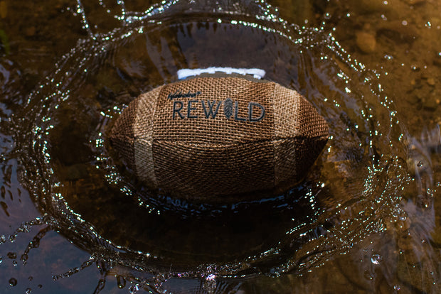 "Rewild 6"" Football"