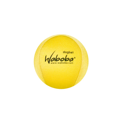 Enjoy Dog toys with Waboba's Fetch