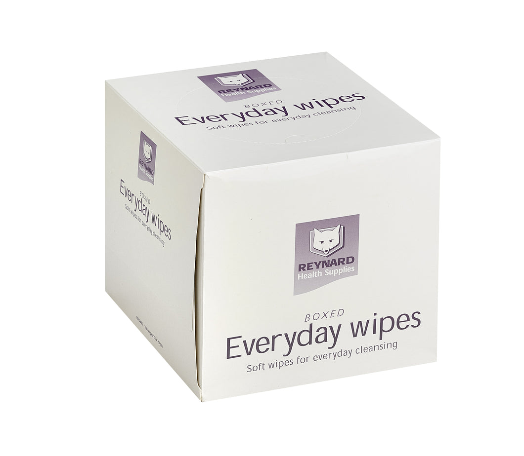 Boxed Everyday Dry Wipes 33x29cm 100/pk 12pk/ctn