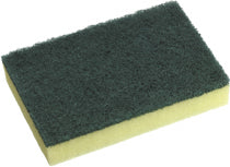 Contractor Green/Yellow Scourer 10pc 150x100mm