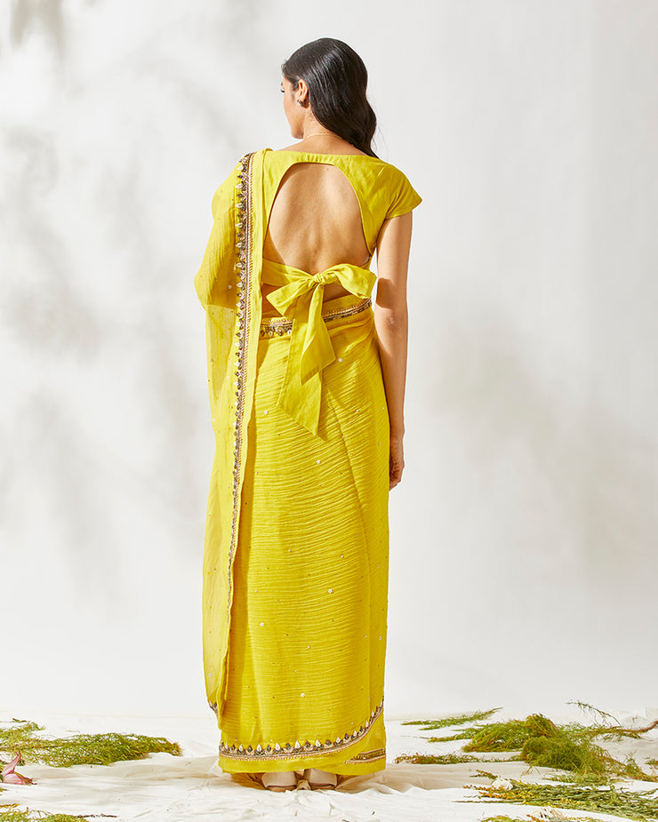 Yellow ZARDOZI BORDER SAREE