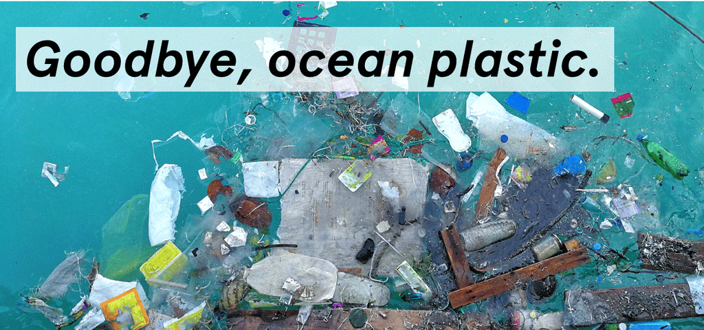 organizations that remove ocean plastic