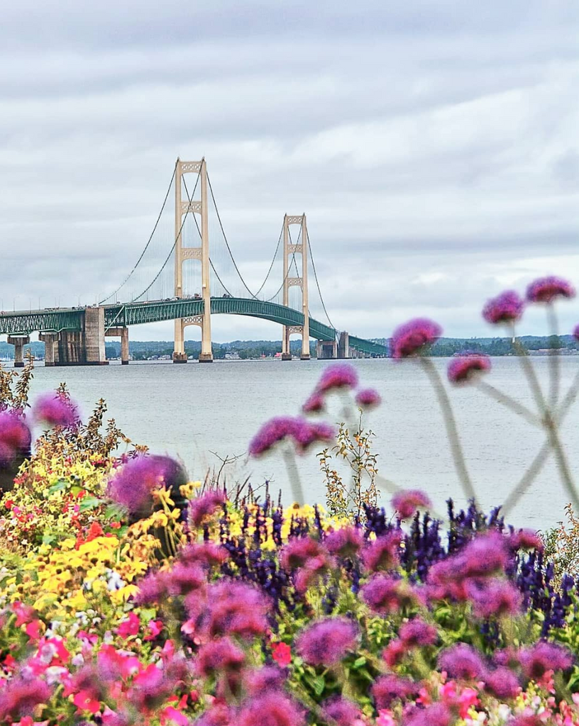 4 Ways to Go Green on Mackinac